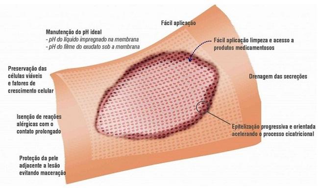 Imagem Membracel Membrana Regeneradora